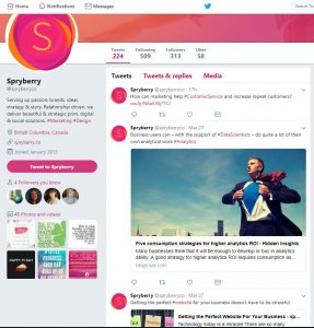 Spryberry Twitter sample