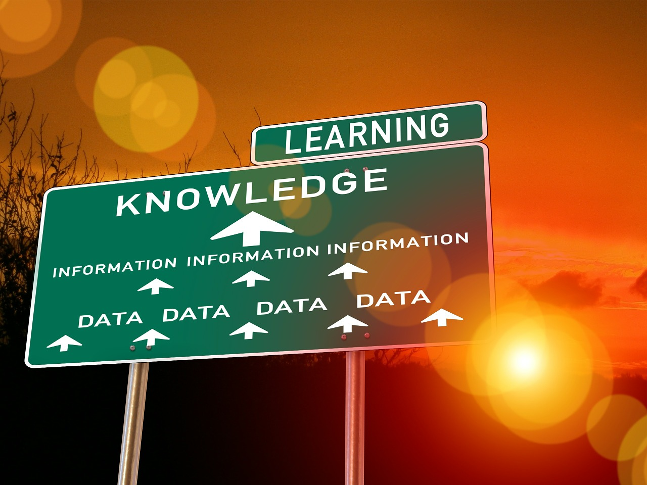 Customer data leads to learning about your target audience